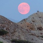 San Andreas Fault Sunset & Stargazing Jeep Tour from Palm Desert