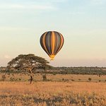 Half-Day Hot Air Balloon Safari and Breakfast in Serengeti