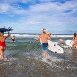 Stray Australia: Sydney to Brisbane - Tour Freestyle