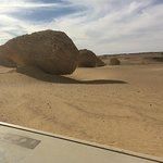 Private Day Tour to El Fayoum & Valley of the Whales from Cairo