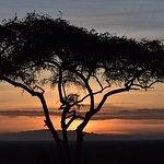 5 Days: Manyara, Serengeti And Ngorongoro Camping Safari.