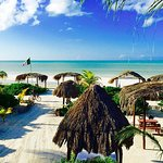 Day trip to Isla Holbox, Yalahau and Isla Pájaros.