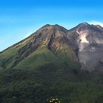 Arenal Volcano Rainforest Walk and Hot Springs