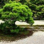 Kyoto: Zen Garden, Zen Mind (kleine Gruppe)