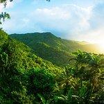 Recorrido para grupos pequeños por las zonas menos transitadas de la selva de El Yunque