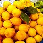 Privat tur till Farmers Market of Tire Town från Kusadasi Port
