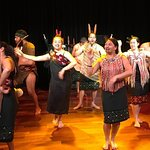 Auckland City and Maori Culture Tour (private vehicle & guide)
