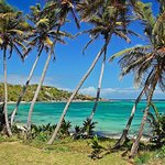 Carriacou Island Day Trip from Grenada