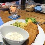 Fisch Franke照片
