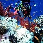 Marin- och konsttur i Mombasa - Dykning, snorkling, skidåkning
