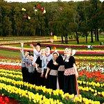 Skip the Line: Tesselaar Tulip Festival General Entry Ticket