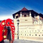 3D 2N Kandy and Sigiriya with Holiday Walkers Sri Lanka