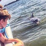 Incontro con due delfini