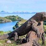 Komodo National Park Sunset Cruise