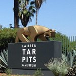 La Brea Tar Pits Admission and Transportation from Anaheim/Orange County.