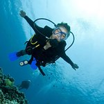 Try Scuba Diving (for Beginners)