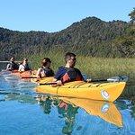 Half day kayak excursions.