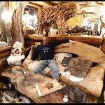 Photo de Grizzly Bar