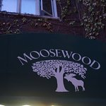 Фотография Moosewood Restaurant