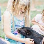 Animal Interaction Tour
