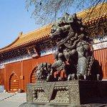 Excursión de un día al antiguo Beijing y al Estadio Olímpico