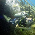 SCUBA Diving at Catalina Island - All Inclusive