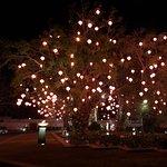 ภาพถ่ายของ Saffron by Banyan Tree Phuket