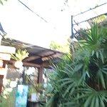 ภาพถ่ายของ 9 Tamarind Cafe by Nine Phetchabun Farm