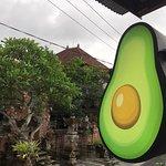 Фотография Avocado Warung Ubud
