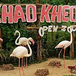 Khao Kheow Open Zoo Ticket Pattaya
