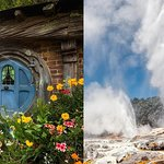 Hobbiton & Rotorua Including Te Puia - Small Group Tour from Auckland