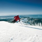 Grouse Mountain Full Day Snow Lift Ticket