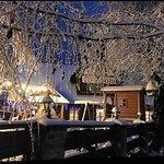 Zimowa szata Zbója :)