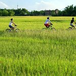 Private Hoi An Countryside Adventure With Scooter