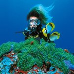 PADI Oplev Scuba Diving i Montego Bay