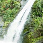 Grenada Island Tour: Concord Waterfall, Gouyave Nutmeg Station and Grand Etang Lake
