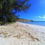 Excursión de un día a Lizard Island en avión desde Cairns