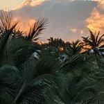 Φωτογραφία: Karnagio Antigua