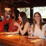 Tour de pequeños grupos por el campo vinícola de Santa Bárbara
