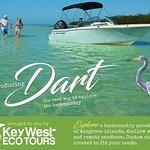 Backcountry Paradise Charters on Dart
