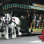 스탠리 파크 Horse-Drawn Tours