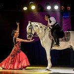 Abendessen, Mittelalter- und Flamenco-Show im Valltordera Castle (Shuttlebus inklusive)