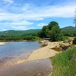 Self-Guided Saco River Kayak Trip