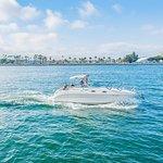 90 Minute San Diego Bay Tour