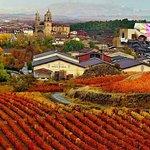 Vitoria and the Rioja Wine Region