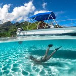 Private 3-Hour Boat Tour of Moorea Lagoon