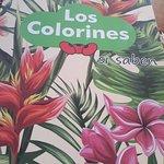 Foto de Los Colorines
