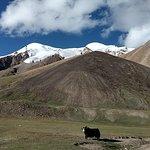 17 Days Trekking Shimshal Pass Manglik Sar (6050m Peak Pakistan