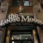 תמונה של Loose Moose