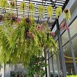 ภาพถ่ายของ ฺBoonta Flowers And Cafe